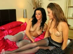 Two brunette girl4girl teasing in nylons