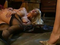 Sexy threesome with brunette and blonde taking it anal