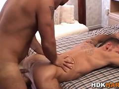 Studs bareback and jerk